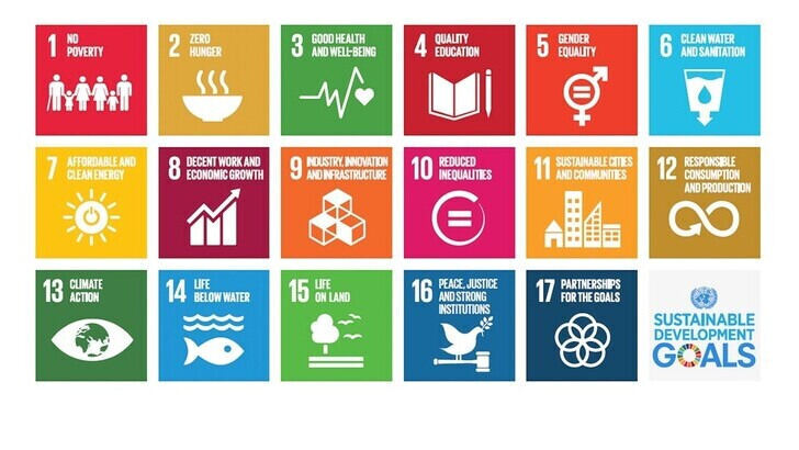 Liste mit den Sustainable Development Goals