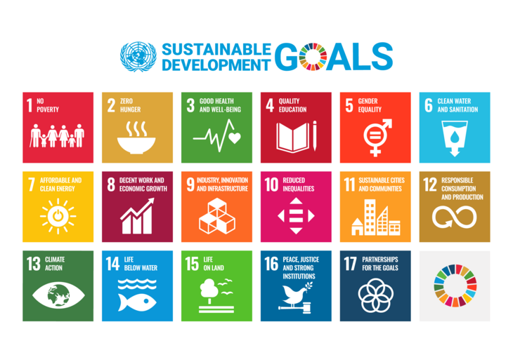 Graphical image of all 17 Sustainable Development Goals